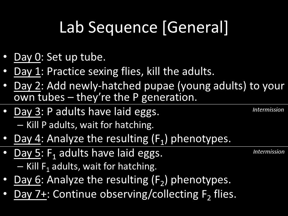 Lab Sequence [General]